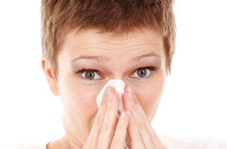 Allergie Grippe Niesen Taschentuch