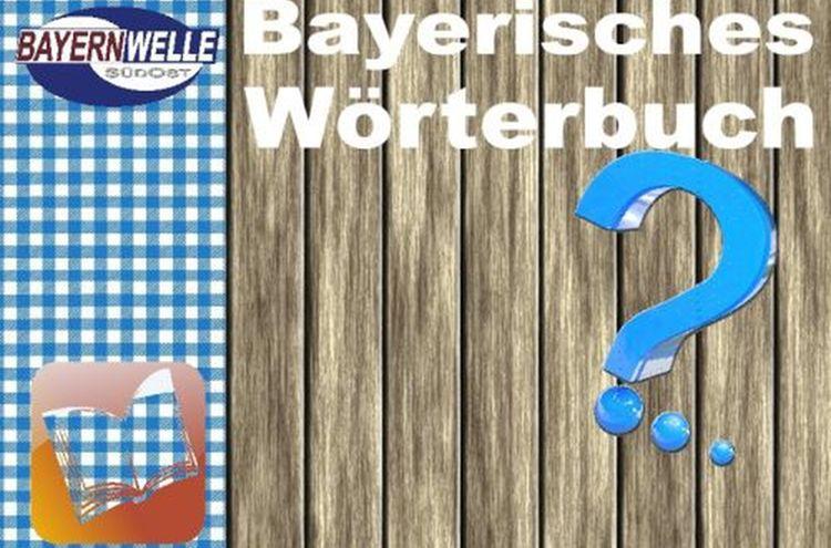 Bayerisches Woerterbuch 500