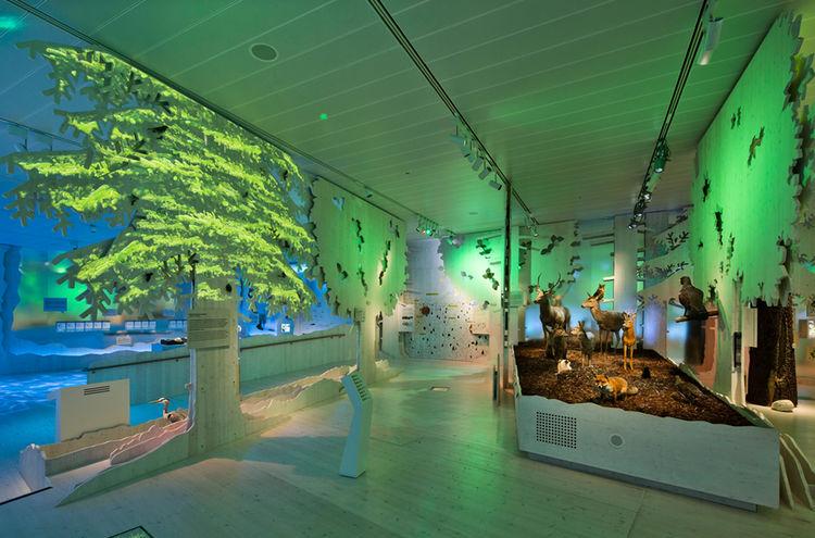 Bilderspiegelungen Hdb Infozentrum Ausstellung 001 1200