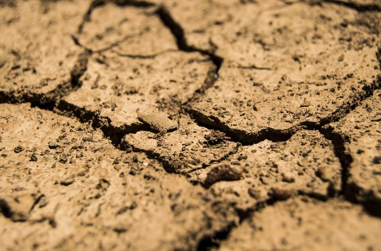 Drought 780088 1280