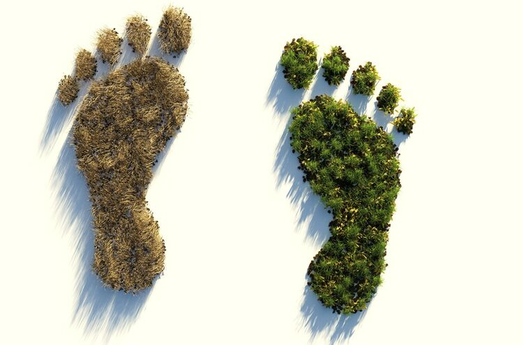 Ecological Footprint 4123696 1920
