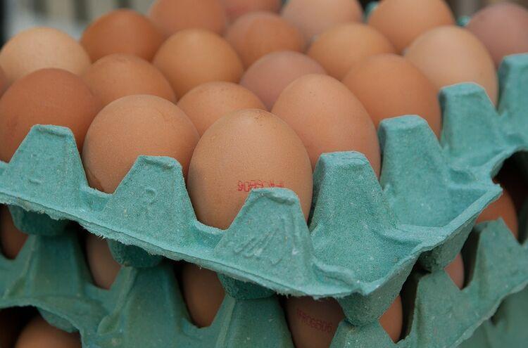 Eier In Schachtel