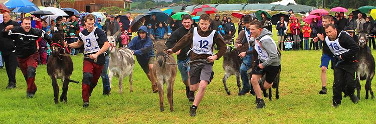 Eselrennen 2017 in Holzhausen