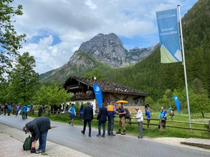 Bartgeier Nationalpark Berchtesgadener