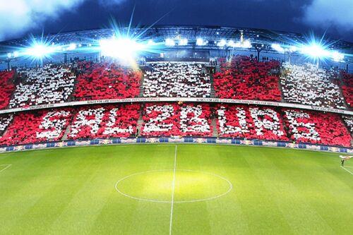 Fc Red Bulll Salzburg