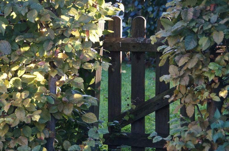 Garden Gate 966108 1280