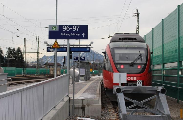 Img 8360
