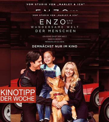 Kinotipp Der Woche Enzo