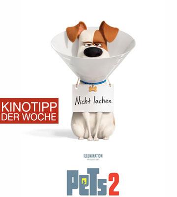 Kinotipp Der Woche Pets2