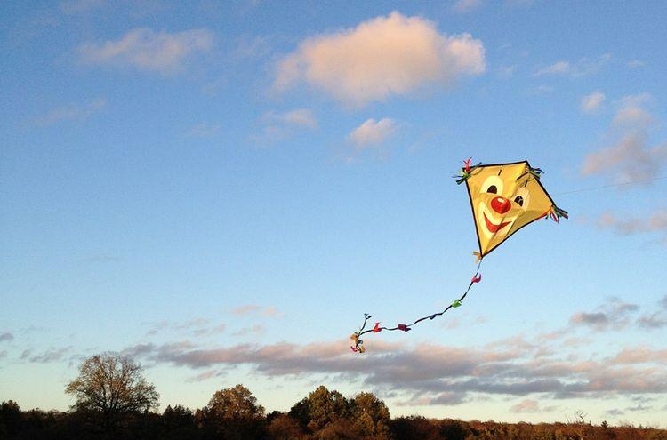 Kites Rise 557638 1280