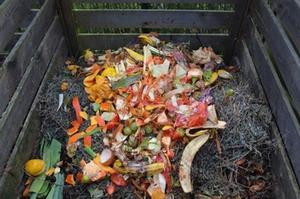 kompost_biomüll