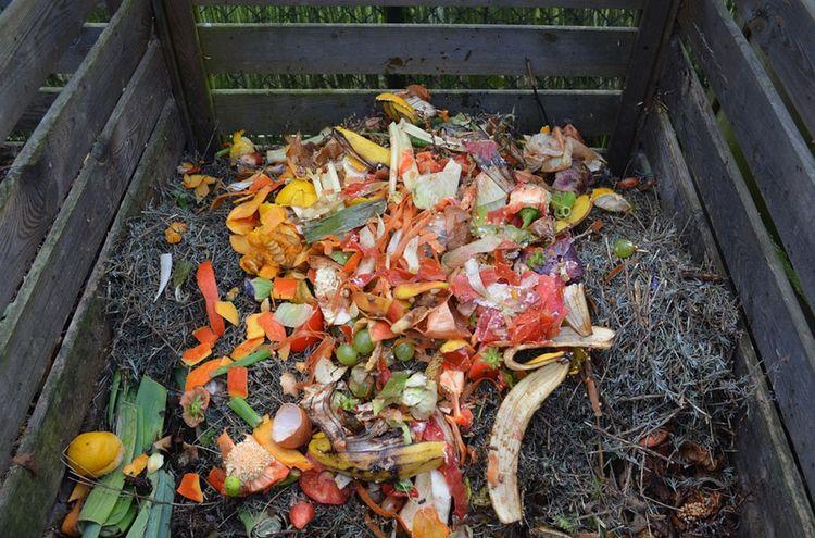 Kompost Biomuell