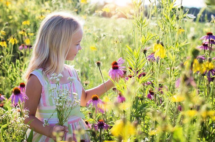 Little Girl 2516578 1280