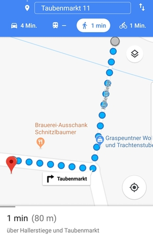Google-Maps Screenshot