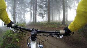 Mountain Biker Wald