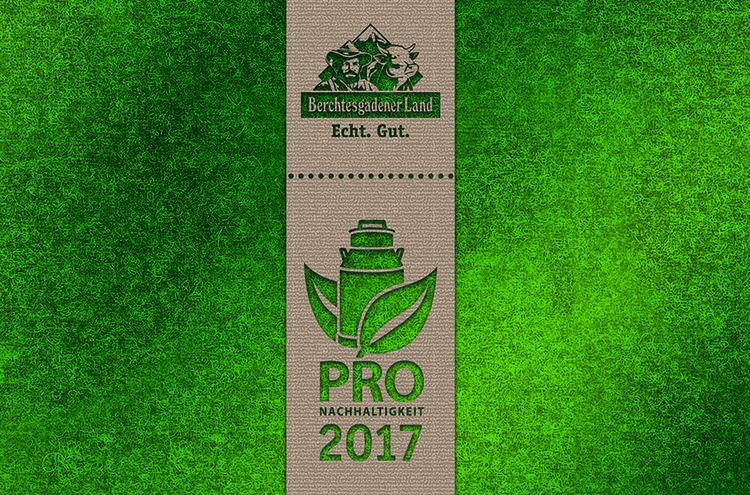 Nachhaltigkeitsbericht 2017 Cmyk