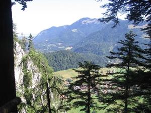 naturwaldreservat-oberwoessen11
