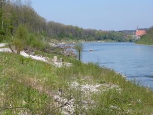 Salzach Ufersanierung