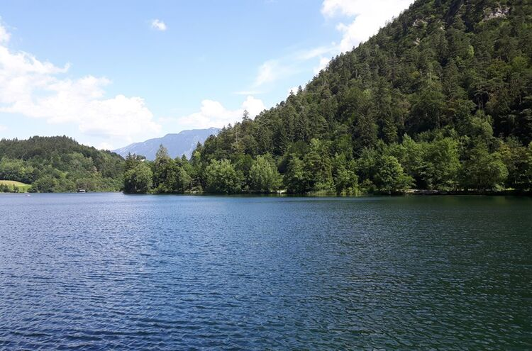 Thumsee3