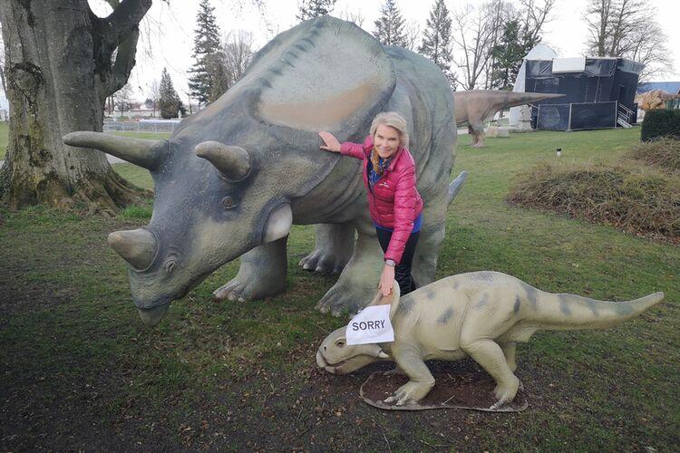Torosaurus Zurueck 1