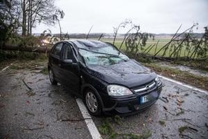 Unwetter Baum Auto