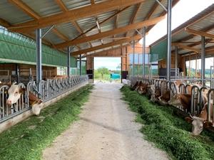 Bio-Landwirtschaftsbetrieb Surberg