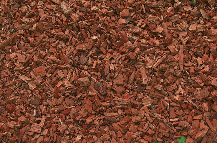 Wood Chips 3588368 960 720